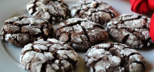 Biscuit craquelé au chocolat1