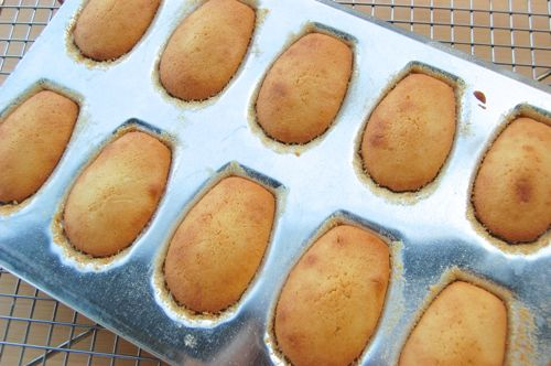 Les madeleines6
