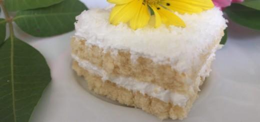 Le mont blanc (gateau antillais crème coco)1