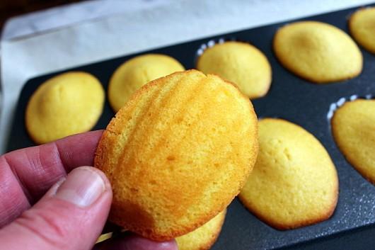 madeleines-au-citron2