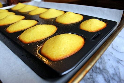 madeleines-au-citron6
