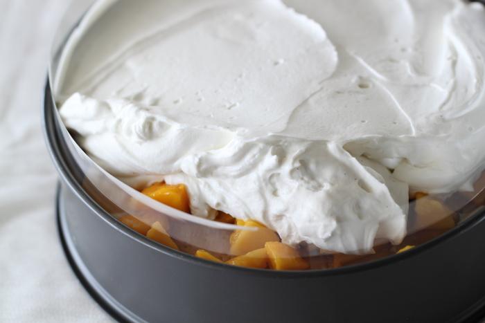 Gâteau aux petits beurre mascarpone et mangue4
