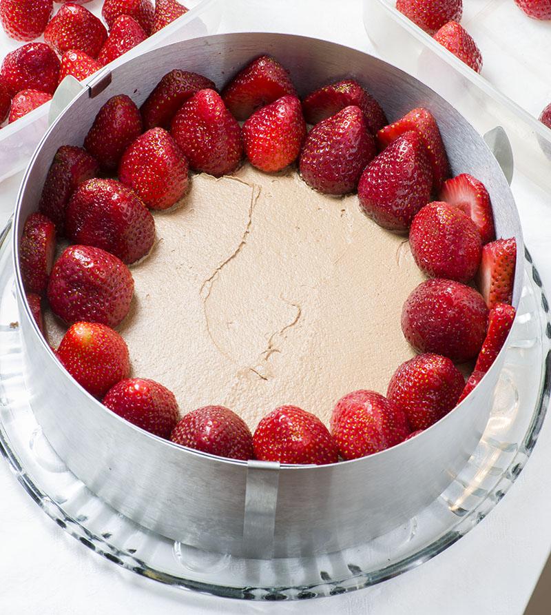 Le fraisier au chocolat2