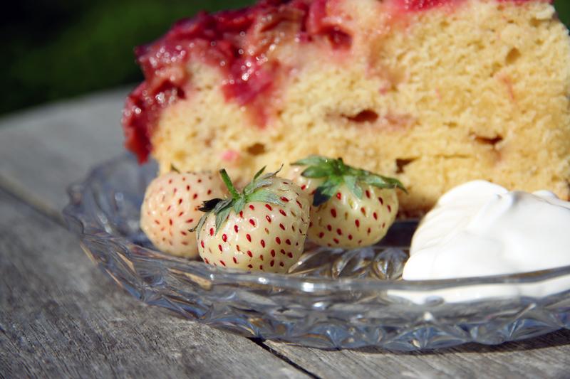 Gâteau renversé fraises-rhubarbe4